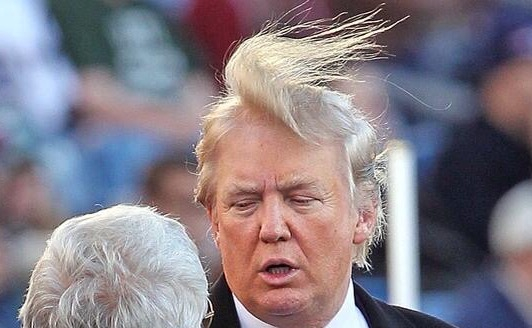 Toupee or Not Toupee? That is the Question: