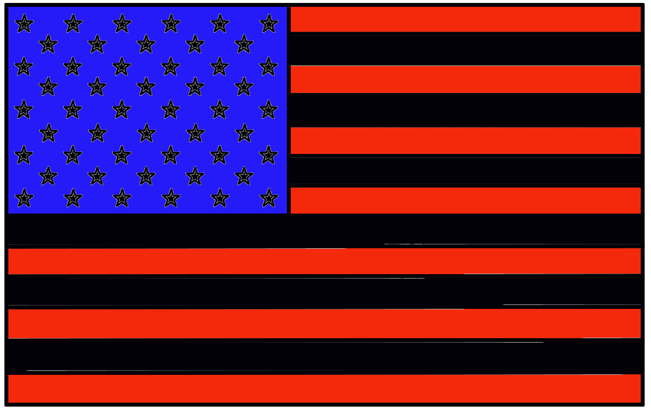 Washington DC Hillary Clinton Today Declared That If Elected President She Would Replace All The White Strips In American Flag With Black Ones